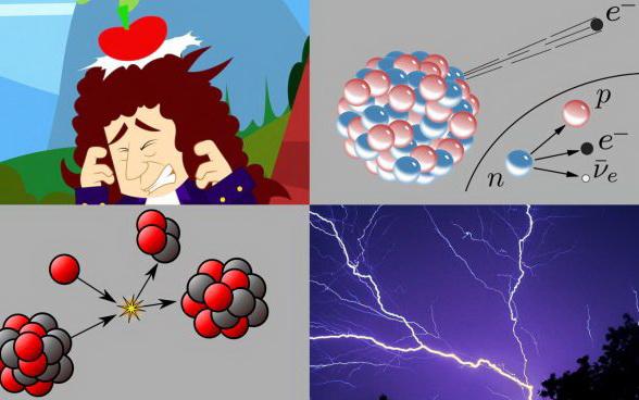"""La """"Fisica"""" e le quattro forze fondamentali"""